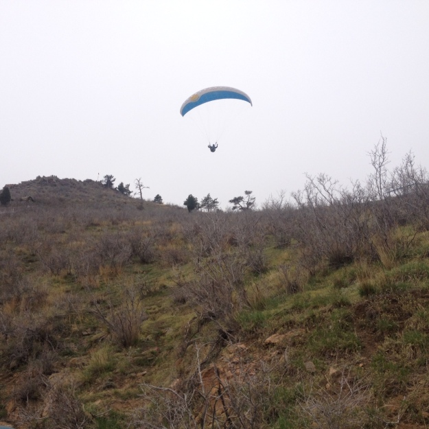 Lookout_Gliding